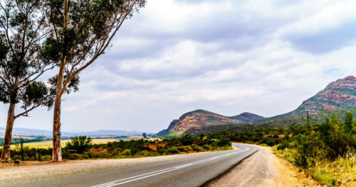 Cape Town And Winelands, Cape Garden Route, Karoo And Back To Gauteng